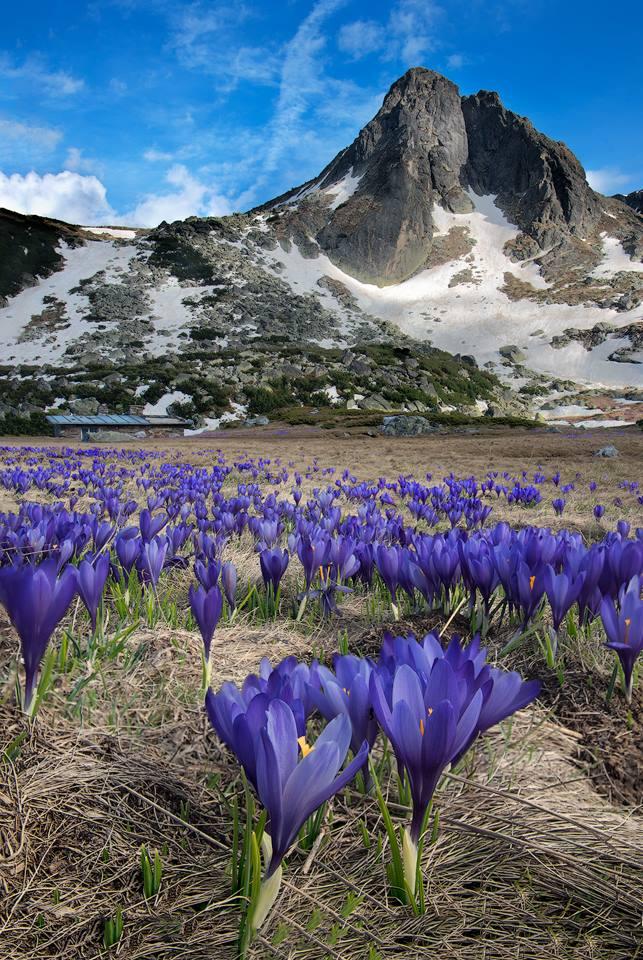 Short training: Providing environmental protection information / Опазване на околната среда от планинските водачи